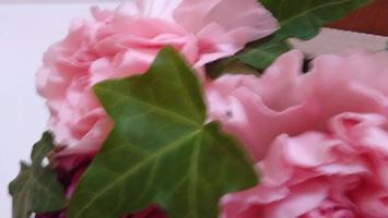 花粉症、喘息、アトピー、皮膚の痒み